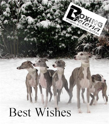 best-wishes-2010-small.jpg