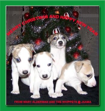 christmascard2010-small.jpg