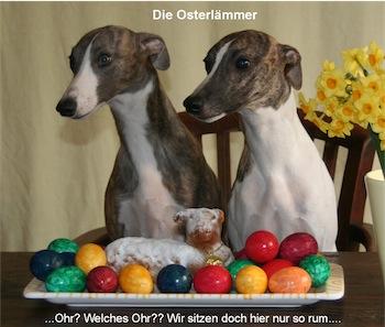 die-osterlammer-small.JPG