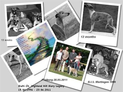 multi-ch-highland-hill-mary-legacy-15041996_23062011-small.jpg