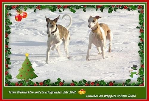 weihnachten-2011-small.jpg