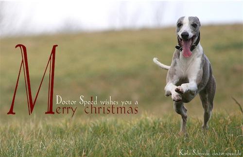 weihnachtskarte-small.jpg