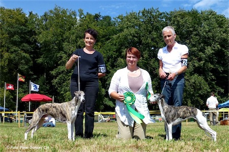 462_cac-lotzwil-swcotrophy12_s-small.jpg