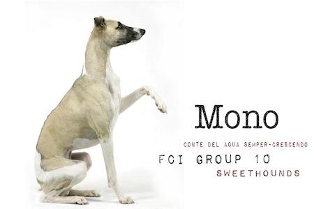 mono_sweethounds-small.jpg