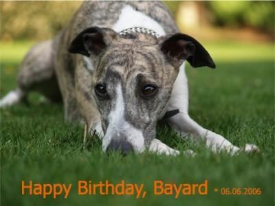 Bayard_08.05_1-small