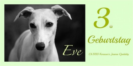 GEb_EVE-small