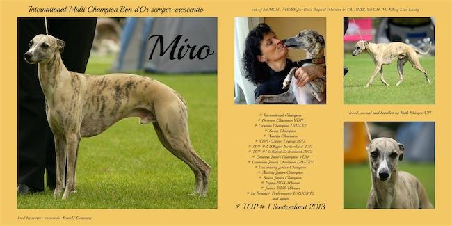 Miro_Top_1_13_1-small