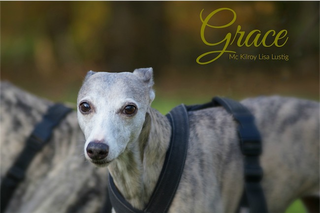 12_Grace-small