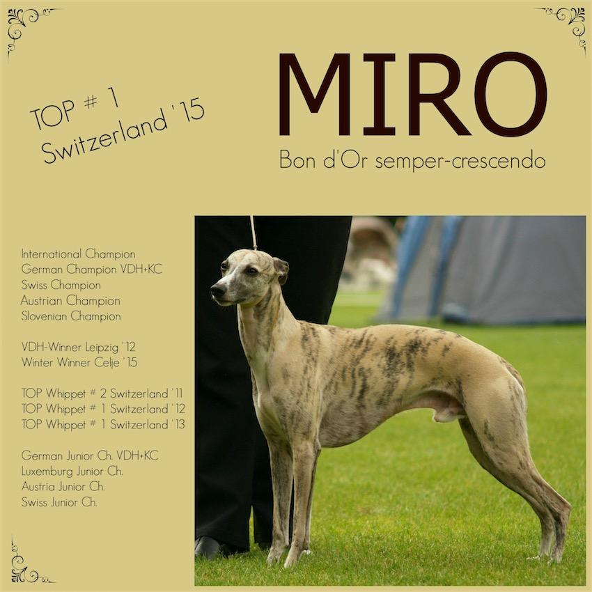 Miro_1_1-small